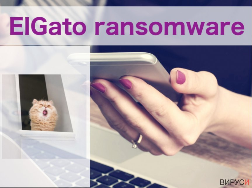 An illustration of the ElGato ransowmare virus