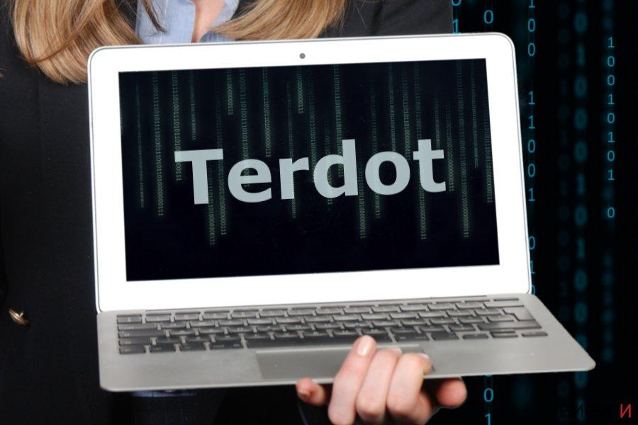 Изображение на зловредния софтуер Terdot